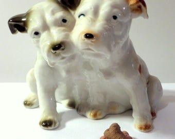 Adorable Terrier Pals