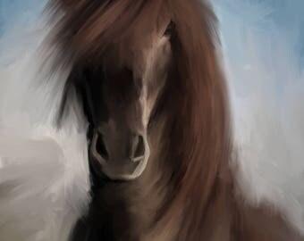 The Icelandic Horse #2