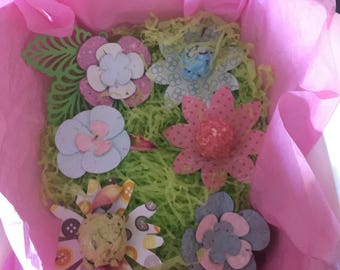 Garden in a box, special gift for any occasion, Seed Paper and Seed bomb collection, Greeting of your choice (send message)