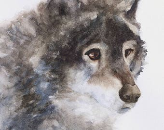 painting of wolf painting Wolf Print of wolf nursery art print woodland theme animal peek a boo SEE PHOTOS to view all 15 PRINTS 11x14 New