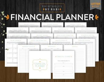 Budget Planner Financial Inserts Printable Page Savings, Income, Debt, Finance Expenses Tracker Finances Planner Printable, Finances Inserts