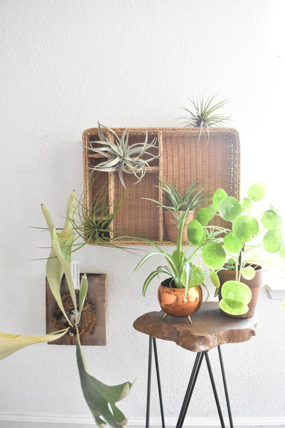 large woven wicker wall hanging storage organizer / card note holder