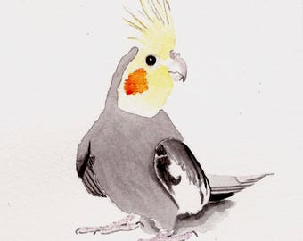 Cockatiel, bird painting, 5x7 print from original watercolor, birds, home decor, bird art, home, living, art & collectibles, earthspalette
