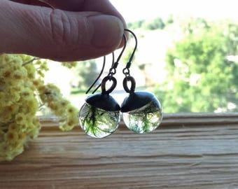 Natural Moss  Earrings. sterling silver earrings, real moss in resin spheres, Terrarium Earrings, Boho gift earrings, Gift for her,  Bustani