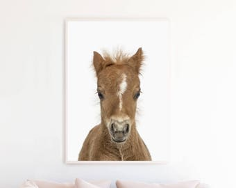Woodland Nursery Art, Baby Horse Foal Wall Art Print, Printable Nursery Art, Nursery Decor, Baby Animals Art, Baby Animal Printable, bhpc