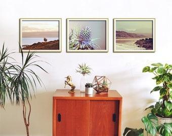 Set of 3 Wall Art, Scottish Art, Living Room Decor, Set of 3 Prints, Sheep, Thistle, Beach Photography, Wall Decor Print Set, Print Set of 3