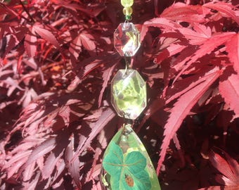 Chandelier drop suncatcher with ivy leaves and ladybird.