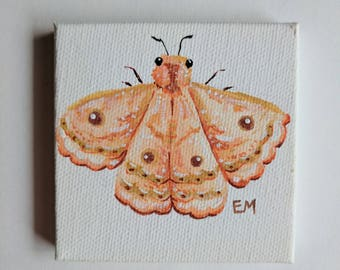 Copper Tree Moth Painting - Original Mini Painting - 3 x 3 in. acrylic on canvas