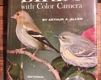 1960s Vintage Bird Photographer's Book - Stalking Birds with Color Camera, by Arthur A. Allen - Antique Film Photography Sixties Decorating