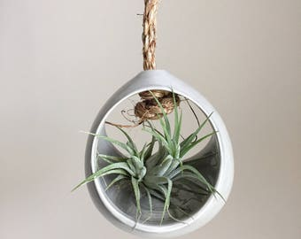 Tillandsia Holder, Modern Plant Holder, Airplant, Air Planter, Air Plant Gift, Air Plant Container, Hanging Air Plant, Air Plant Hanger