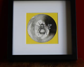 Bee drawing in pen & ink. Original,signed, mounted and framed.