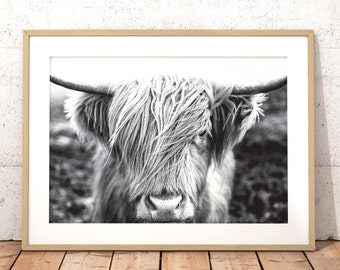 Highland Cow Print, Farm Animal Wall Art, Black & White Photography, Cow Print, Animal Portrait, Printable Poster, Digital Download