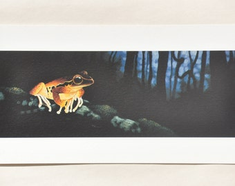 Brown Frog Print by David H. Stacey