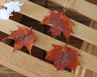 Copper Sugar Maple Leaf Necklace, Real Leaf Necklace, Maple Leaf, Rose Gold, Leaf Necklace, Canadian Maple, Leaf Pendant LC221