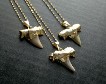 Gold Plated Shark Tooth Necklace Real Shark Tooth Jewelry Gold Shark Necklace Tooth Pendant Tribal Necklace Tribal Jewelry Shark Jewelry