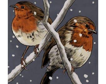 Robins colour art print