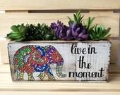 Elephant Planter, Live in the Moment, Succulent Planter, Elephant Decor, Elephant Lover Pot, Garden Gift, Succulent Gift, Indoor Garden