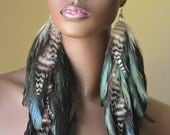 Natural Iridescent and Grizzly Feather Earrings