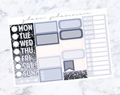 PRE-SALE! Swan Lake Functional Add On Sheet (Glam Planner Stickers for Erin Condren Life Planner)