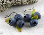 Blaubeeren Ohrringe : handgemachte Blaubeeren / Heidelbeeren - Ohrhänger, bronze, Früchte, Tropfen