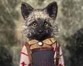 Cole. The Silver Fox.