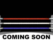 Hasbro WWF Figure Hacksaw Jim Dugan Complete 002