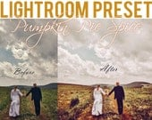 Pumpkin Pie Spice Lightroom Preset: Spice up your photos! A Golden Matte Fall Autumn Sunset Hour Foliage Photo Editing Portrait Wedding