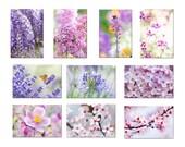 Dix cartes postales fleurs, cartes photos fleurs de jardin, photos fleurs, fleur rose, mauve, flower card, flower postcard, organic card