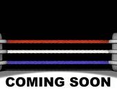 Hasbro WWF wrestling Figure Honky Tonk Man Complete 009