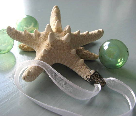 Пляж Декор Морская звезда Рождество Украшение - Seashell рождественские украшения