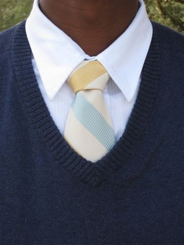 FREE SHIPPING-Dress up Dress down Tie