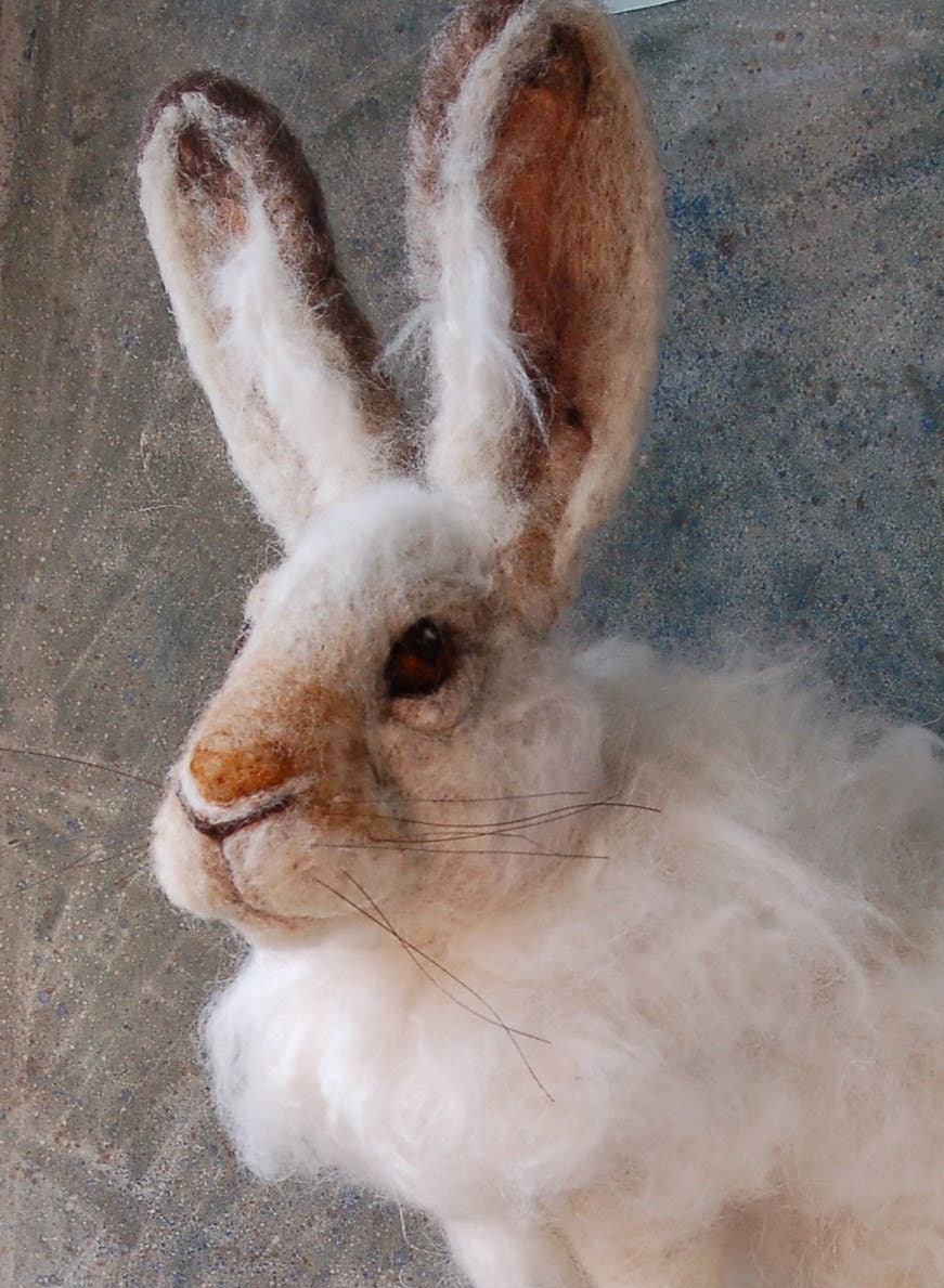 SALE Snowshoe Hare - Life Sized