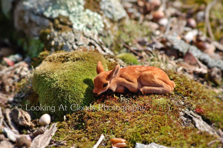 sweet tiny deer on a bed of moss kawaii 5x7 art photo spring green - LookingAtClouds