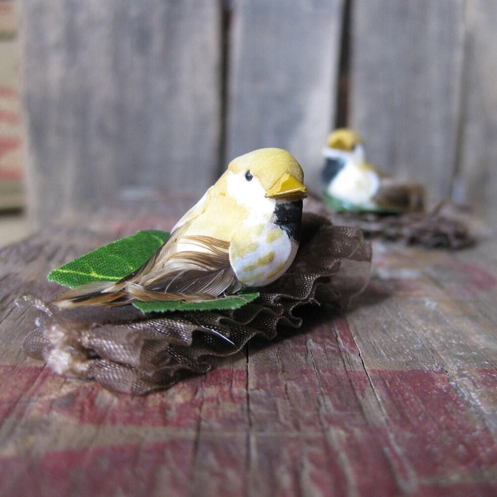little blonde birdies