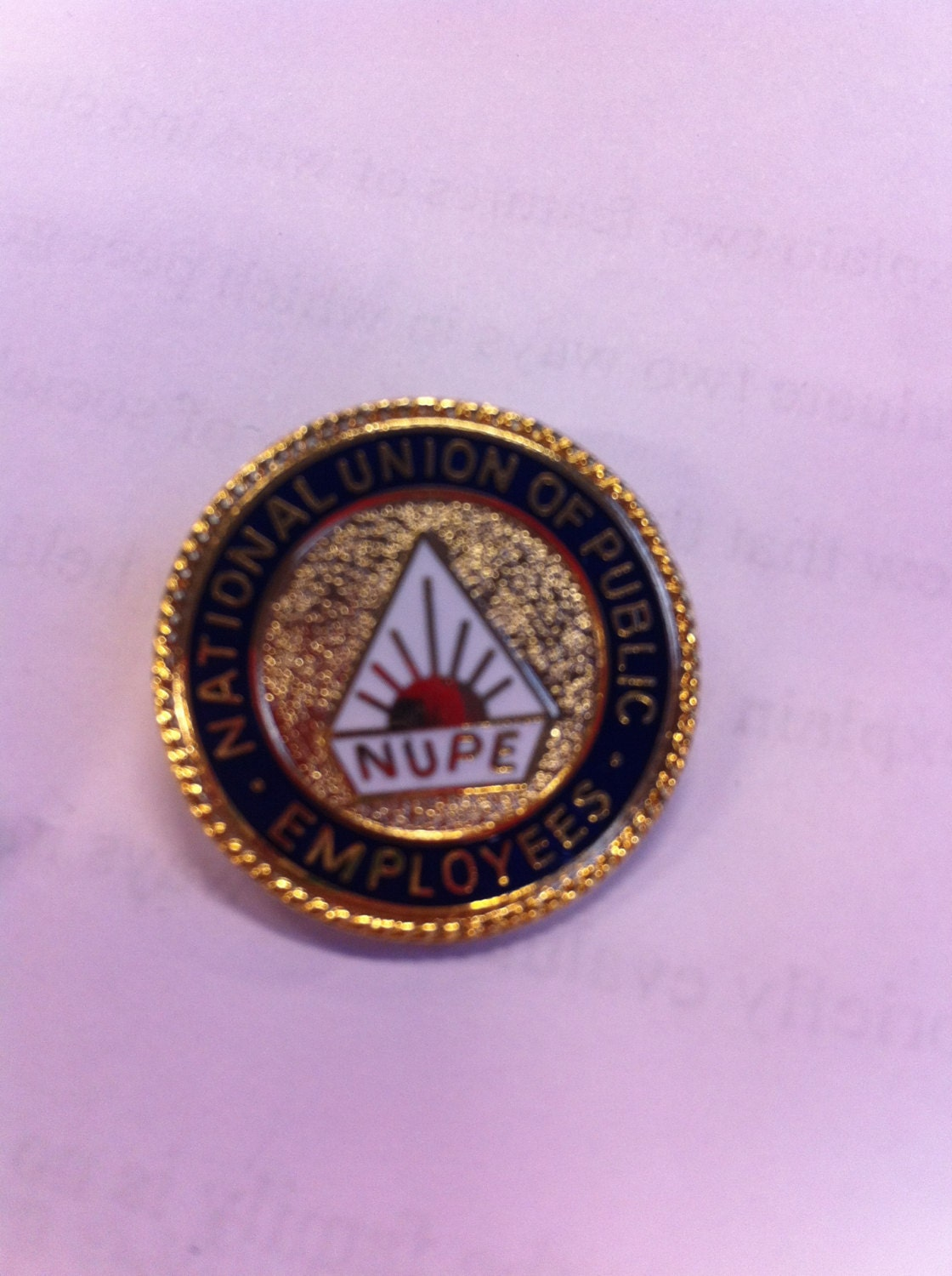 Vintage brooch pin badge NUPE union badge antique retro unisex