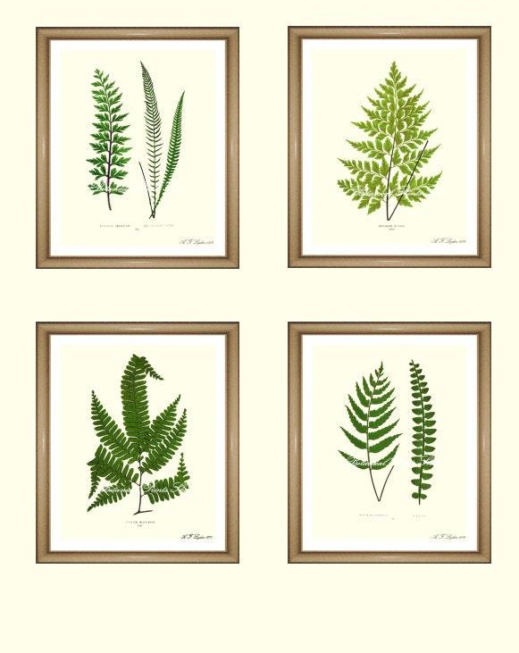 Fern Prints Set Botanical Print Set Any 4 By