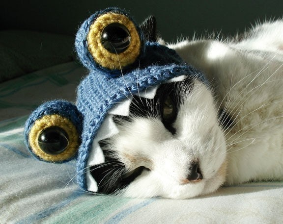 pet hat - monster