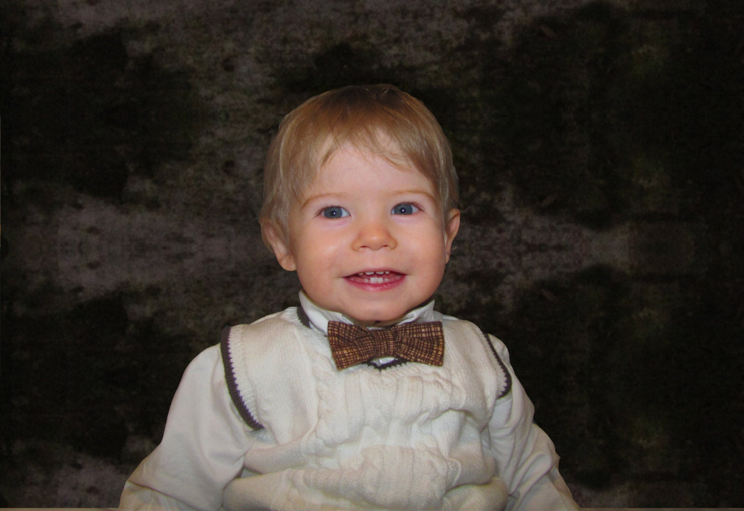Brown and Tan Bow Tie