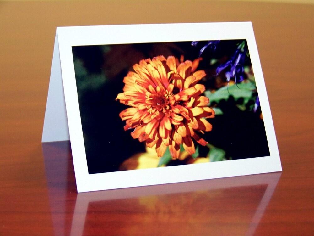 4 Rich Orange Flower Note Cards