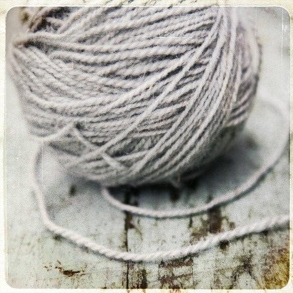 Ball 'O Wool - 8X8 Fine Art Print - janeheller