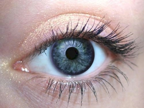 Apricot - Pure Organic Mineral Eye Color