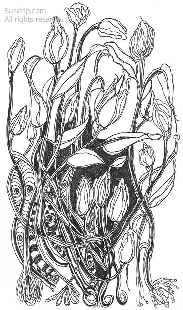 Tangled Wild Flowers Line Drawing Abstract Modern Art