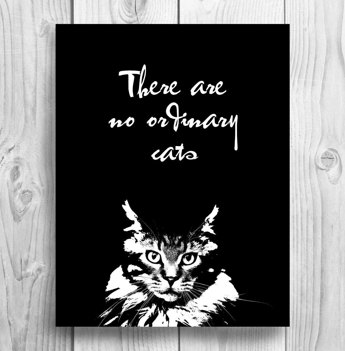 Instant download cat print, printable cat, downloadable print, digital print of cat - PuszartPrints