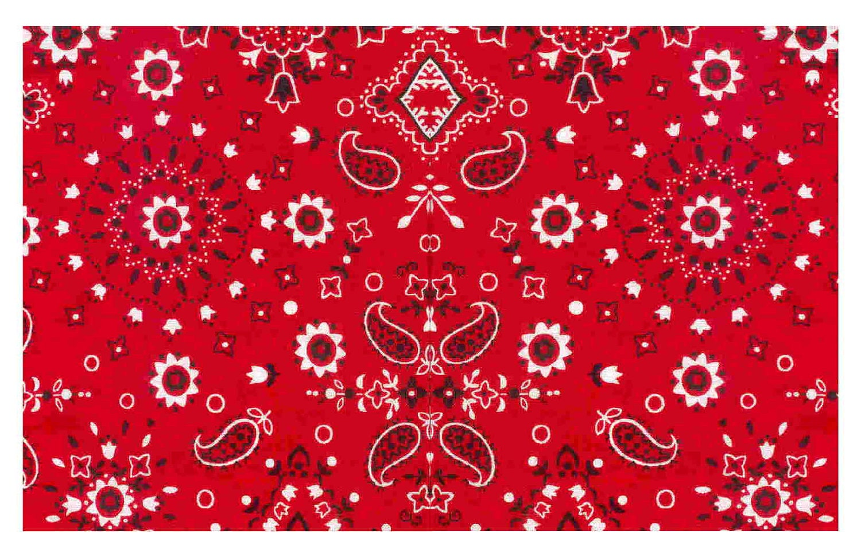 Displaying 20> Images For - Red Bandana Pattern...