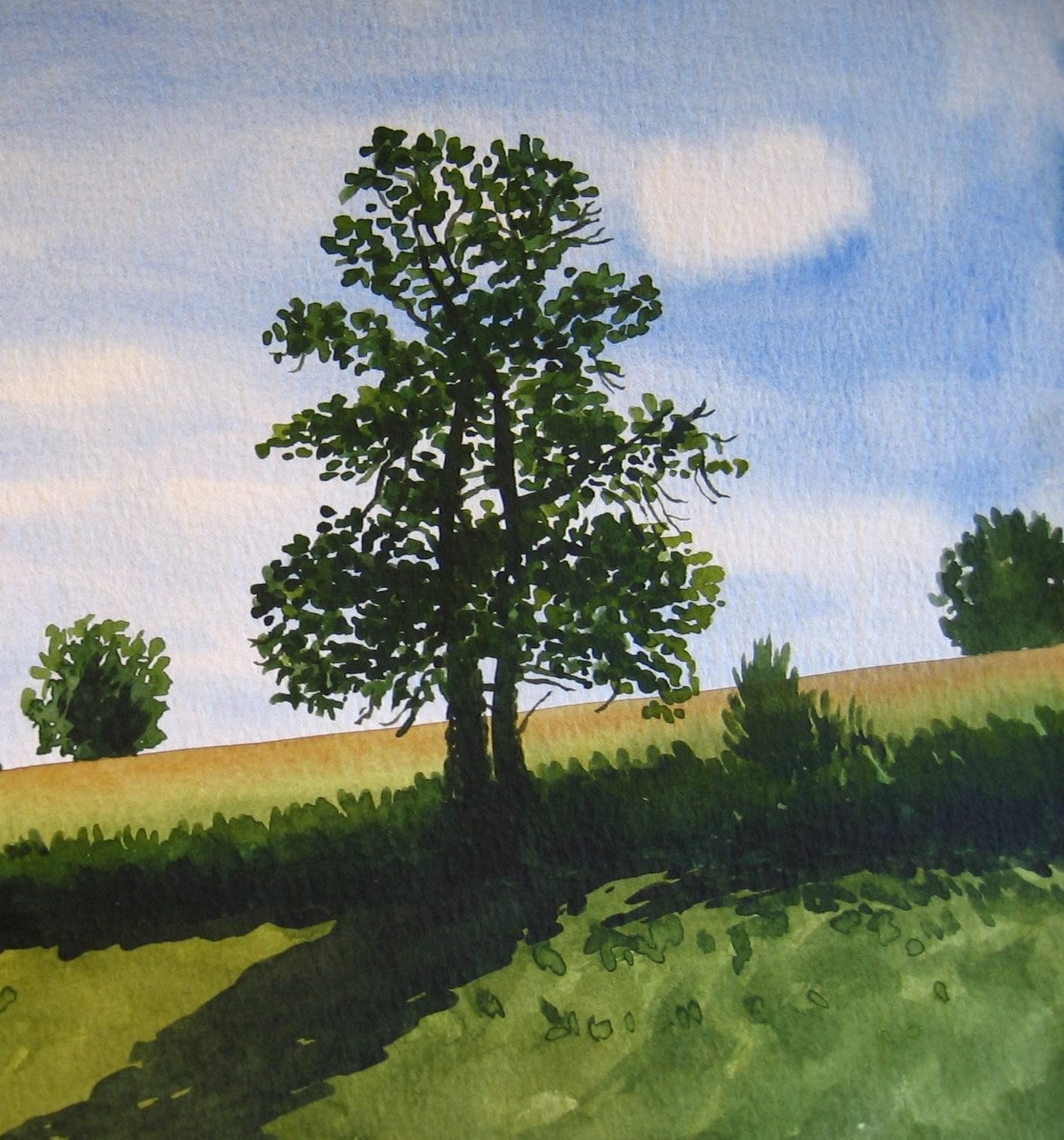 Tree in Summer - Original Watercolour