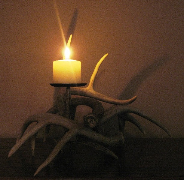 Whitetail deer antler candle holder by deerdear on etsy