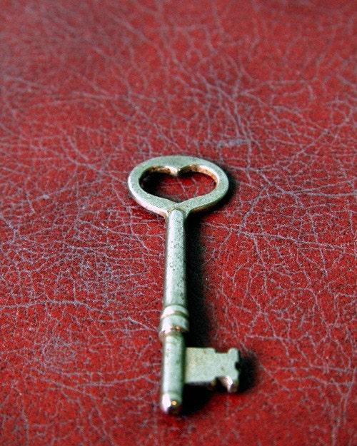 Skeleton Key To My Heart