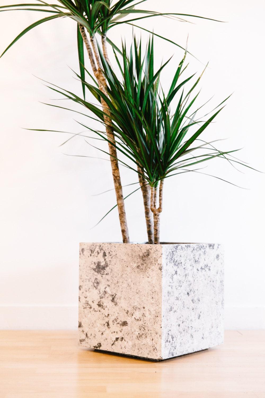 Image du produit Jardinire en bton // Noir, Gris et Blanc // Pot de fleurs // Accessoire maison et jardin // Dcoration dintrieur // Style moderne