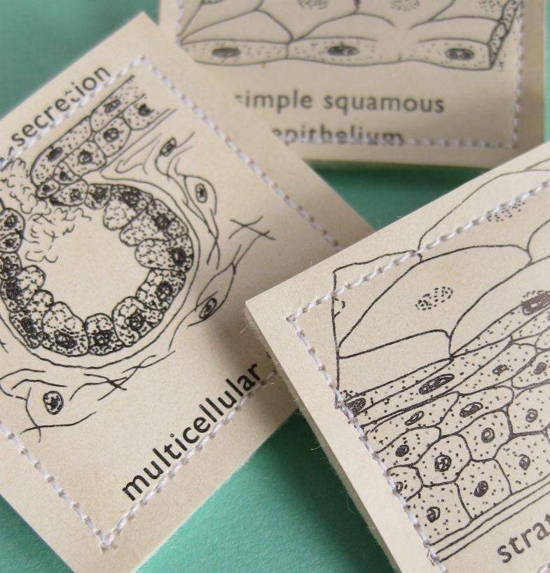 Epithelium, vintage paper brooches, yourorgangrinder