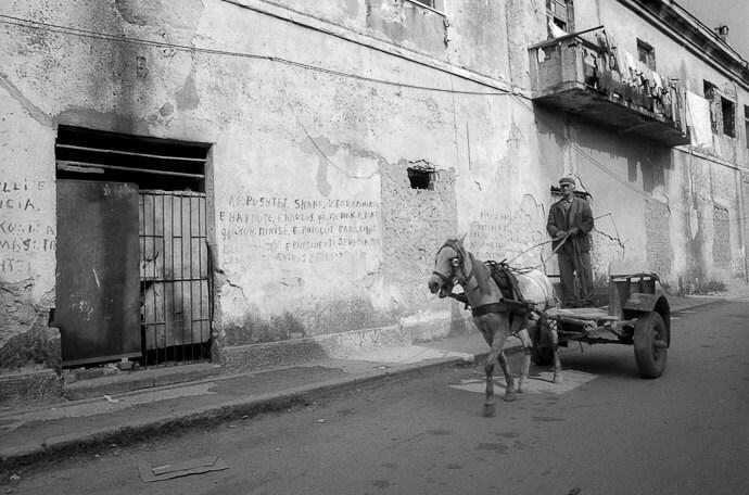 "Albania horse cart B&W photo 8""x10"" - EileenKovchokPhotos"